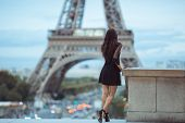Elegant Romantic Parisian Woman In Black Sexy Dress With Flowers Standing Near The Eiffel Tower At T poster