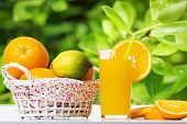 Fresh Orange Juice And Oranges In Basket On Table Against Background Of Green Leaves Of Orange Tree. poster