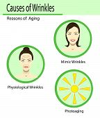 Causes Of Aging, Vector Illustration Reasons Of Aging, Types Of Wrinkles On The White Background poster