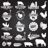 Farm Badge Or Label On The Chalkboard. Vector. Vintage Typography Design With Chicken, Pig, Turkey,  poster