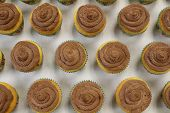 Delicious Handmade Brown Sugar And Vanilla Cupcakes With Homemade Chocolate Butter Cream Frosting Si poster
