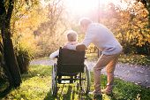 Senior Man And Elderly Woman In Wheelchair In Autumn Nature. Man With His Mother Or A Wife On A Walk poster