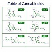 Cannabis Skeletal Cbd Formula. Marijuana Molecules Vector Set. Cannabis Formula Molecular, Chemistry poster
