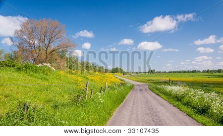 Colorful Landscape In Springtime