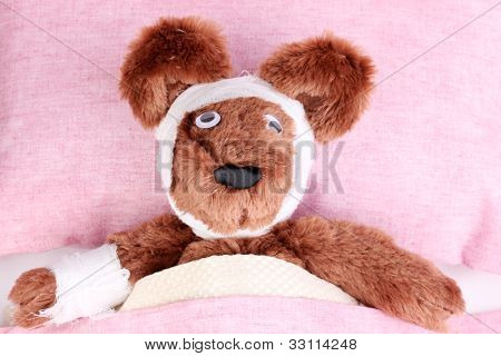 Sick bear in bed