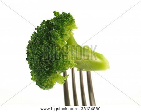 Brokkoli, isoliert