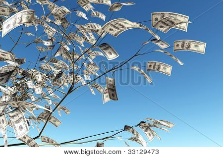 100 Dollars Banknote Instead Of The Leaves