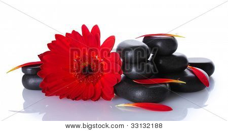 Spa stones, red flower and petals isolated on white