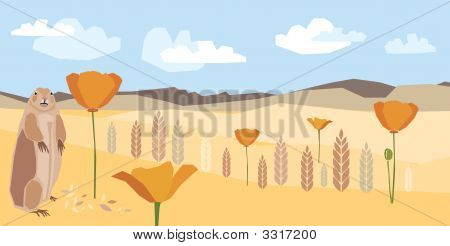Prairie- Illustration