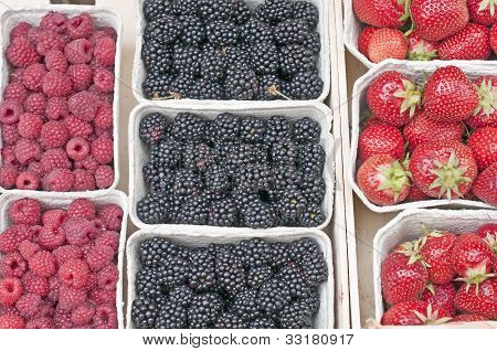 Raspberry,strawberry And Blackberry