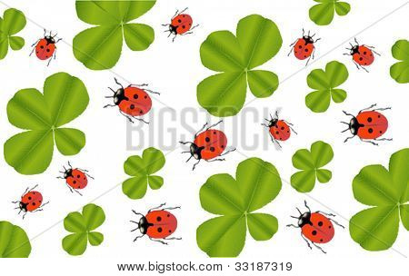 illustration with green clover leaves and red ladybirds background