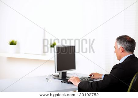 Executive Working On Computer