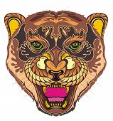 Angry Puma. Animal Face. Vector Illustration Of Angry Tiger poster