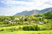 foto of luzon  - Philippines mountain village and tobacco field - JPG