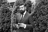 Providing Feedback. Serious Businessman With Smartphone. Agile Business. Bearded Man On Business Mee poster