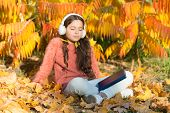 Knowledge Assimilate Better This Way. Small Girl Enjoy Learning Online In Autumn Environment. Little poster