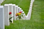 image of arlington cemetery  - Arlington National Cemetery  - JPG