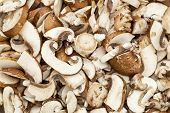 stock photo of crimini mushroom  - background of sliced and diced crimini mushrooms prepared for cooking - JPG