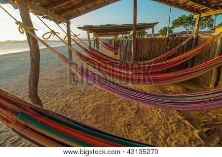 Colorful Beach Hammocks