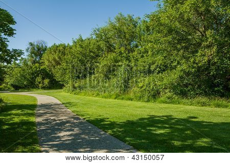 Walk About A Relaxing Trail