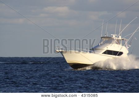 Sport Fisher In Motion