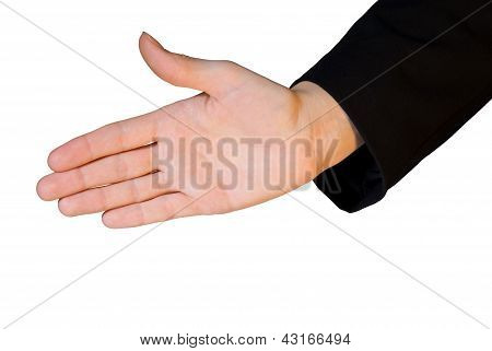 Business Hand