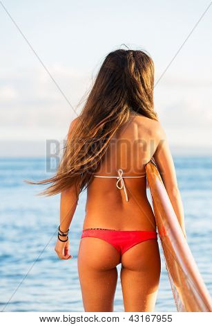 Rear view of beautiful sexy young woman surfer girl in bikini with surfboard on a beach at sunset