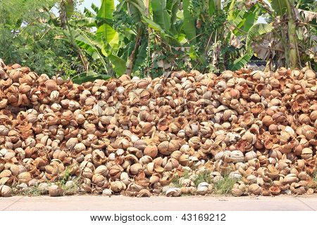 Pile Of Discarded Coconut Husk