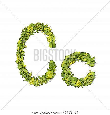 Leaf Font C