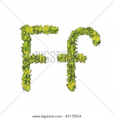 Leaf Font F