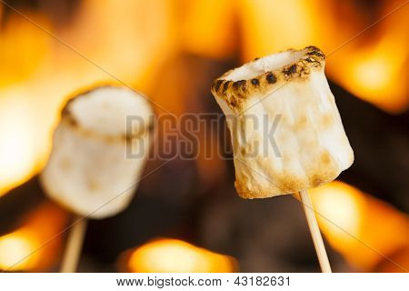 Delicious White Fluffy Roasted Marshmallows