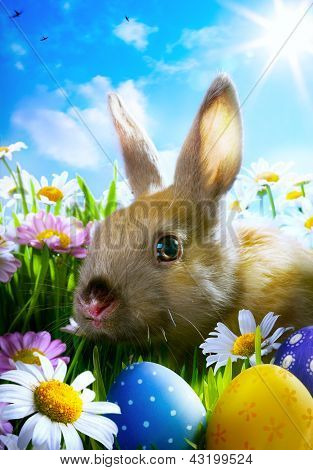 Art Easter Baby Rabbit And Easter Eggs