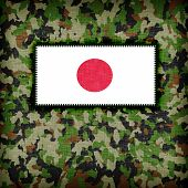 image of ami  - Amy camouflage uniform with flag on it Japan - JPG