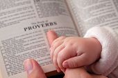 pic of proverb  - Baby holding father - JPG
