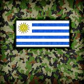 pic of ami  - Amy camouflage uniform with flag on it Uruguay - JPG