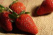 Strawberry On Jute