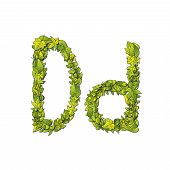picture of storybook  - Leafy storybook font depicting a letter D in upper and lower case - JPG