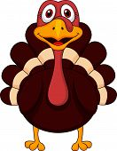 stock photo of fowl  - Vector illustration of cute turkey cartoon isolated on white - JPG