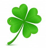 Four Leaf Clover. Vektor-Illustration. St. Patricks Tag-symbol