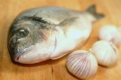 Sea Bream From Greece At Preparation Before Cooking poster