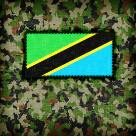 picture of ami  - Amy camouflage uniform with flag on it Tanzania - JPG
