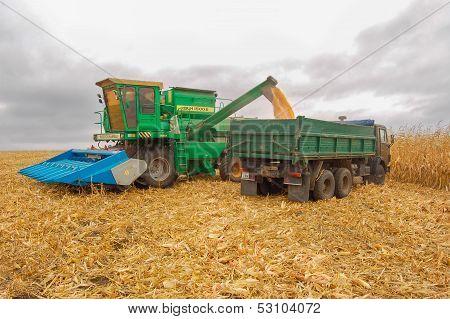 field corn cleaning autumn harvester
