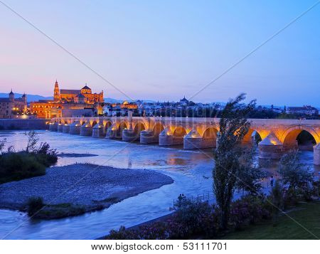 Mosque-cathedral And The Roman Bridge In Cordoba