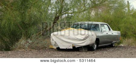 Carros do deserto