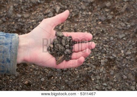 Hand Of The Farmer Holding Handful Of Infertile Earth