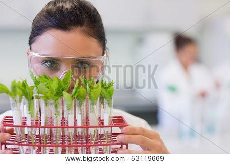 Close-up portrait of a female scientist with young plants at the laboratory