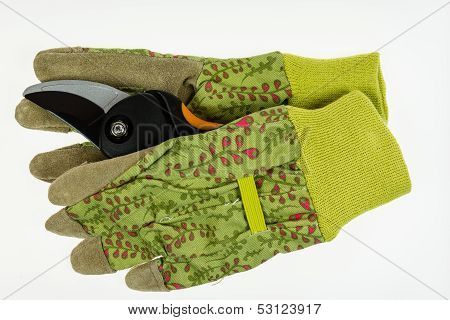 Garden Gloves With Leather Palm And Prune