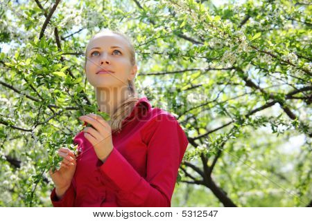 Beautiful Blonde Looks Upward In Blossoming Garden In Spring