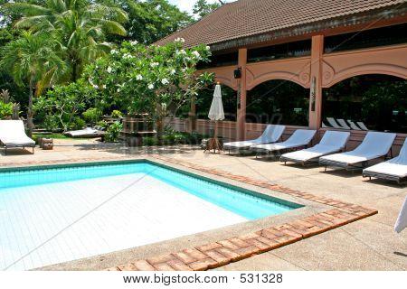 Tropical Poolside
