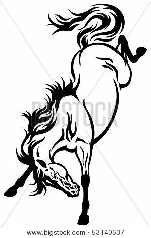Bucking Horse Tattoo